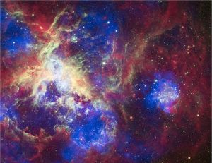 The Tarantula Nebula, by NASA